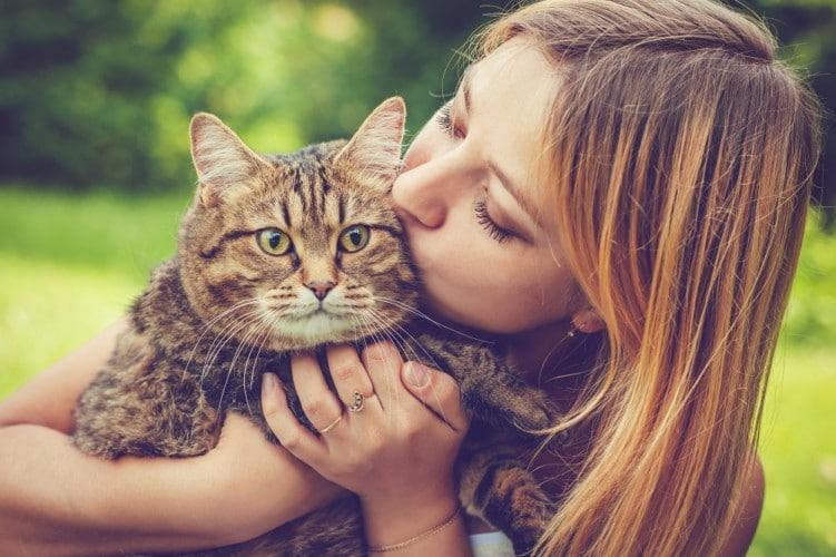 Cat's Urinary Health